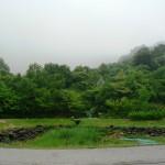 雨降りエコ・ハウス